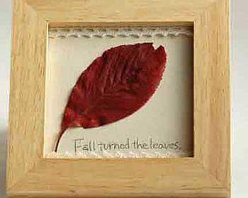 落ち葉のフレーム